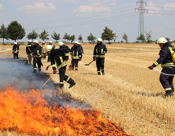 Gemeinschaftsschulung in der Vegetationsbrandbekämpfung