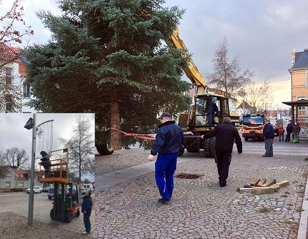 Weihnachtsbäume_aufstellen