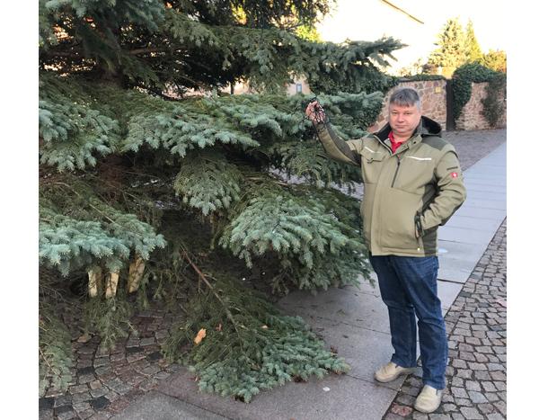 Weihnachtsbaumbeleuchtung zerstört