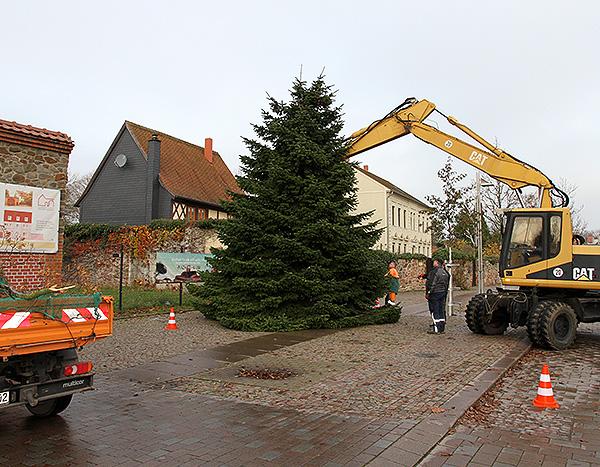 Weihnachtsbäume in den Ortschaften aufgestellt