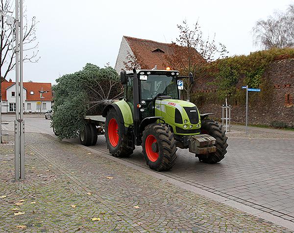 Weihnachtsbaum Barleben Transport